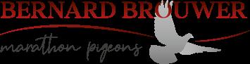 Bernard Brouwer Logo